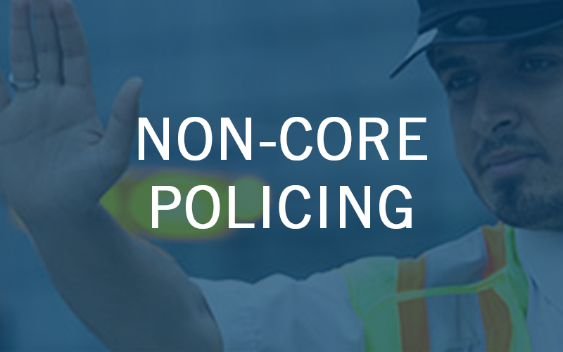 Non-Core Policing
