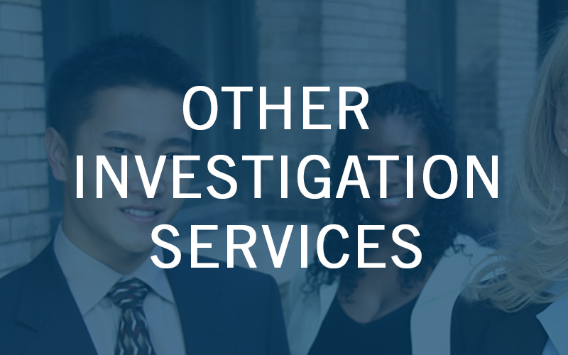 Other Investigation Services