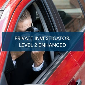Private Investigator: Level 2